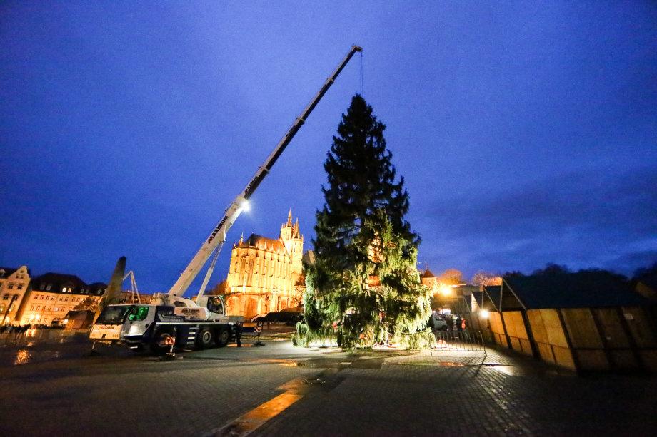 Weihnachtsbaum setzen erfurt